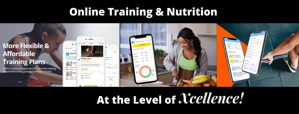 Online Training Near Me